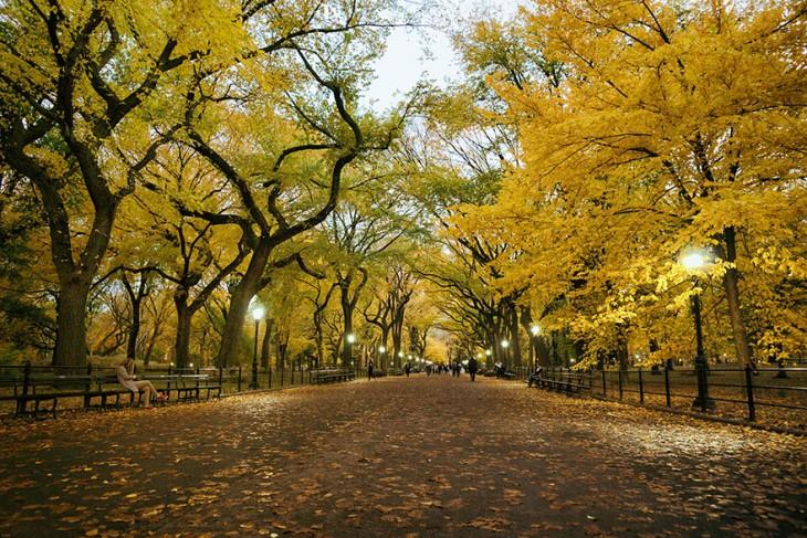 El paseo del poeta, Central Park, Nueva York, EE.UU.