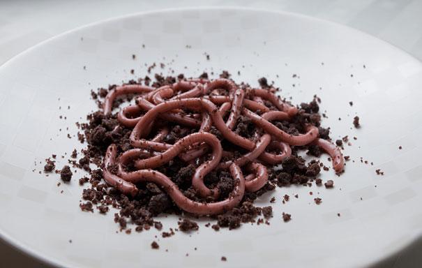 gusanos con tierra