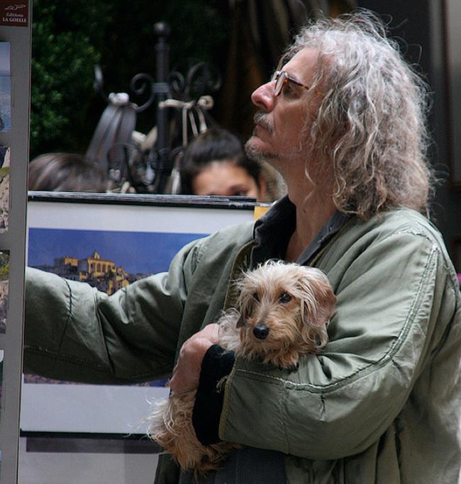 perro y dueño con cabello erizado