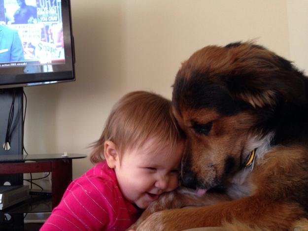 niña abrazando a perro