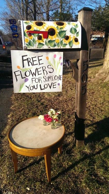 flores gratuitas