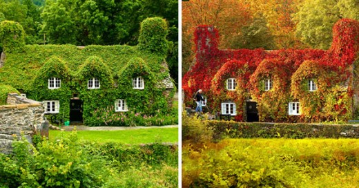 transformaciones otoño el antes y despues