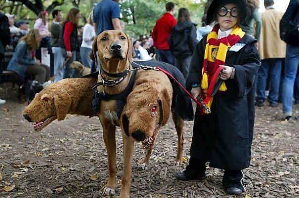 harry potter y el perro de tres cabezas