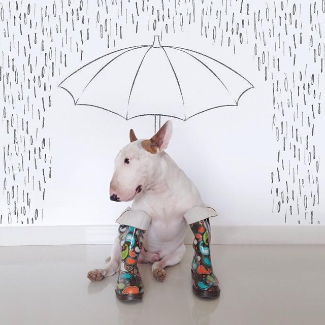 preparado para la lluvia