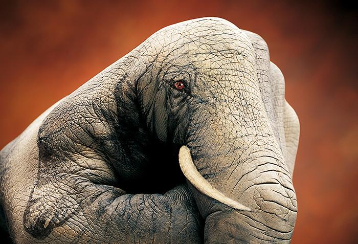 bodypaint de de un elefante