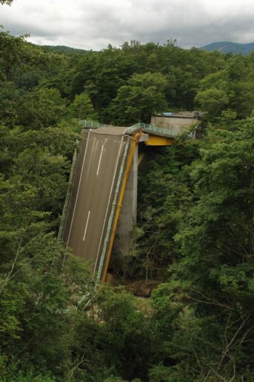 ruta destruida por un bosque