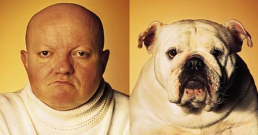 perros que se parecen a sus dueños