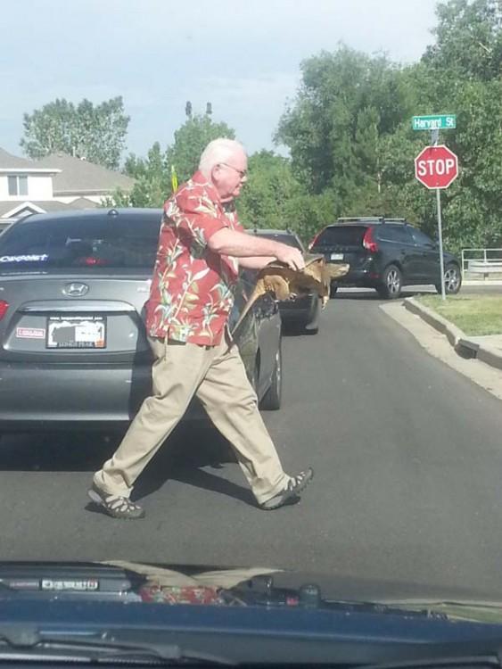 señor salvando a tortuga