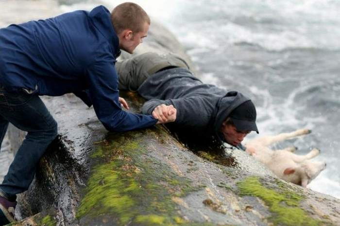 jovenes salvado un ternera