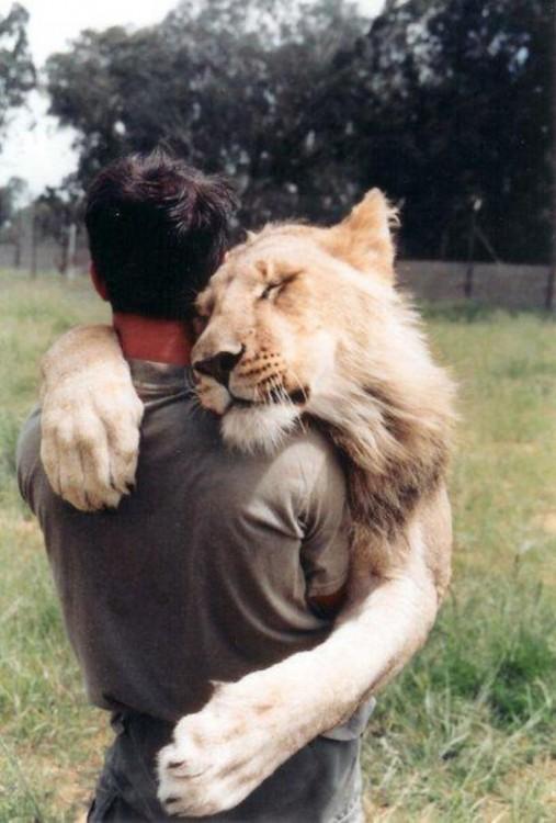 leon abrazando a un hombre