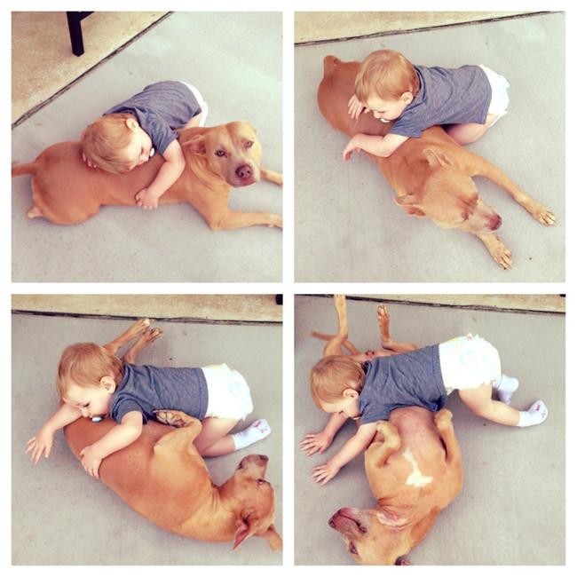 bebe jugando con un perro de diferentes maneras