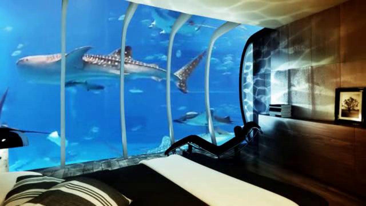 hotel bajo el agua en zanzibar para dormir con los peces