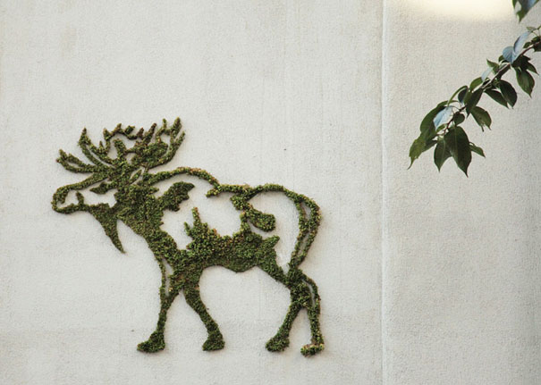 alce realizado con  graffiti de musgo