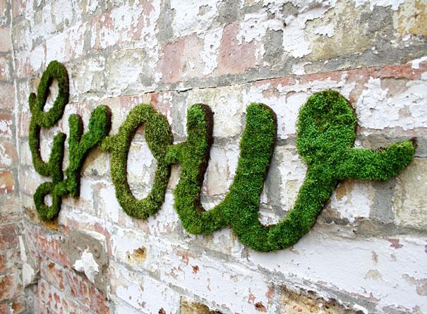 graffiti de musgo crecido