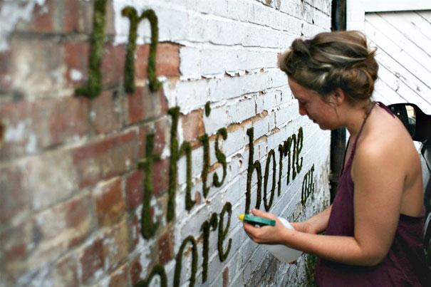 graffiti de musgo, letras