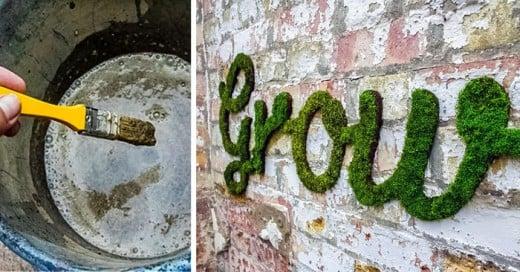 grafittis con mugo en las paredes