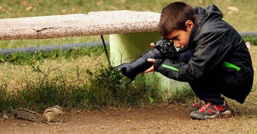 fotografo nino de animales salvajes