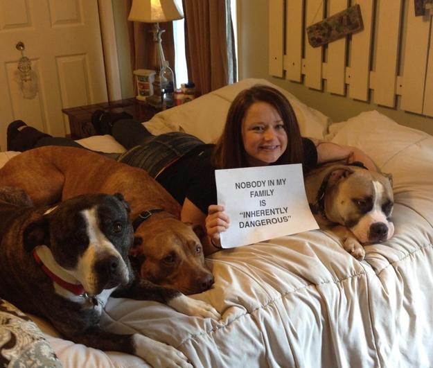 señora con tres perros en su ccama y un letrero de que no son peligrosos