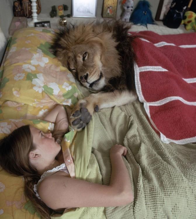 leon acostado en la cama con una persona