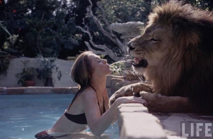 mujer en una alberca con un leon esperandola