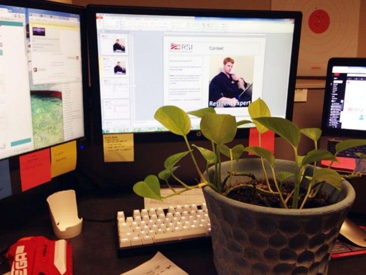 se fotografia con una planta en acciones cotidianas