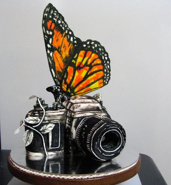 pastel mariposa cámara de fotos