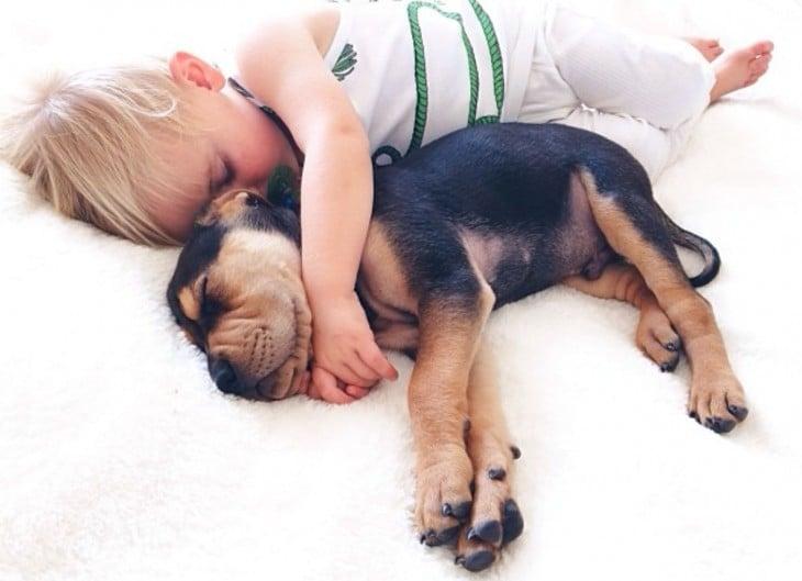niño abrazando a su perro cuando estan dormidos