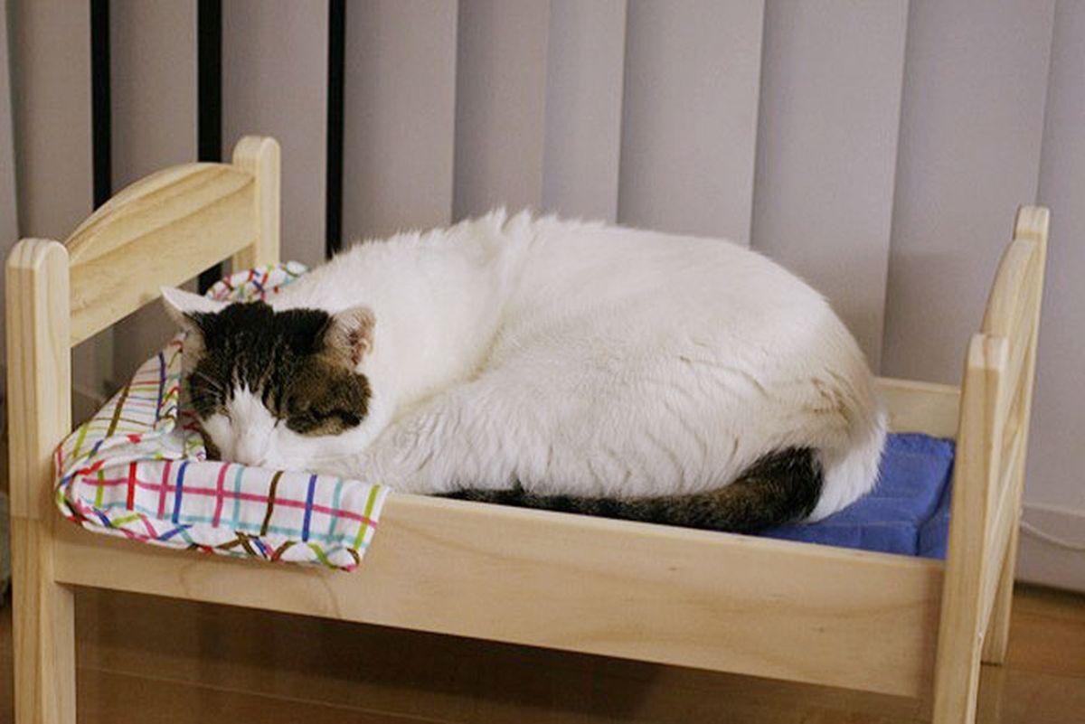 Japoneses transforman camas de mu ecas en camas para gatos - Cama munecas ikea ...