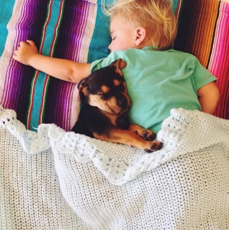 niño dormido boca abajo tapado con una cobija y su perro al lado