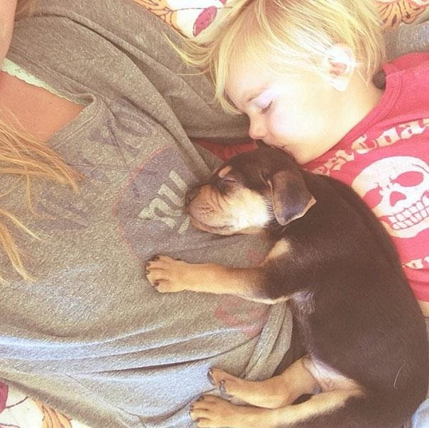 cachorro y bebe dormidos en el pecho de su mama