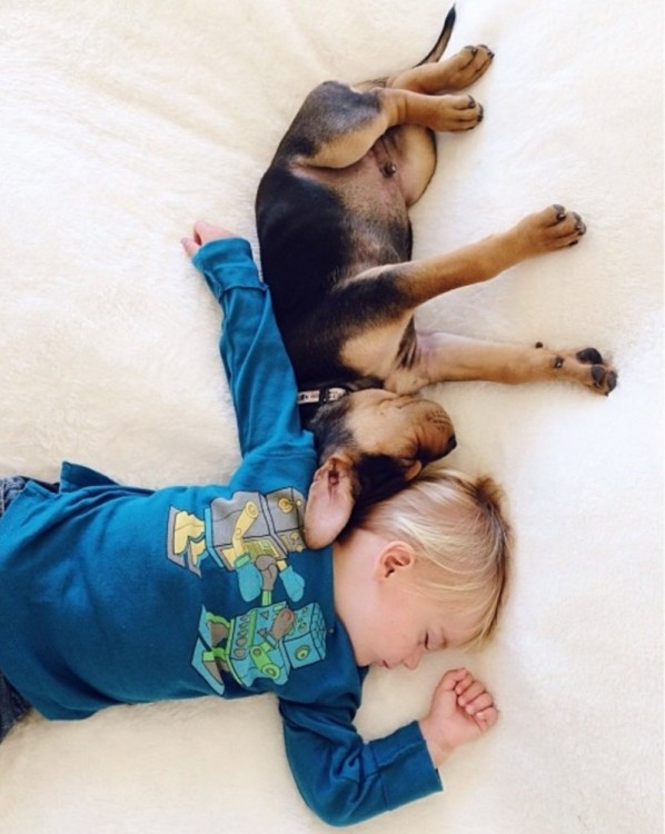 niño y perro dormidos en forma de cruz
