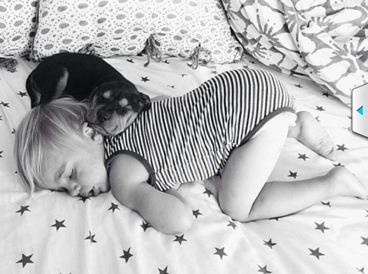 niño y perro dormidos de forma curiosa