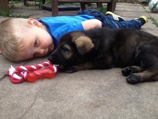 perro negro acostado al lado de un niño