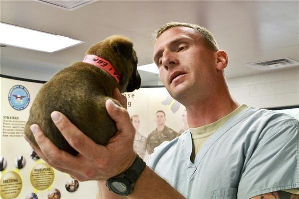 señor sosteniendo a un cachorro