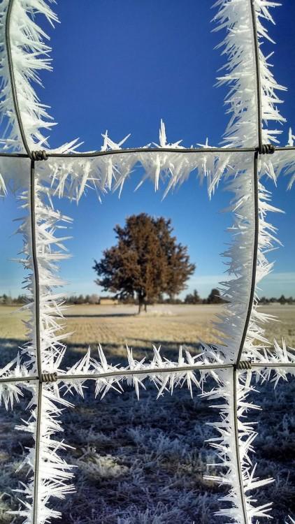 ventana congelada con hielo