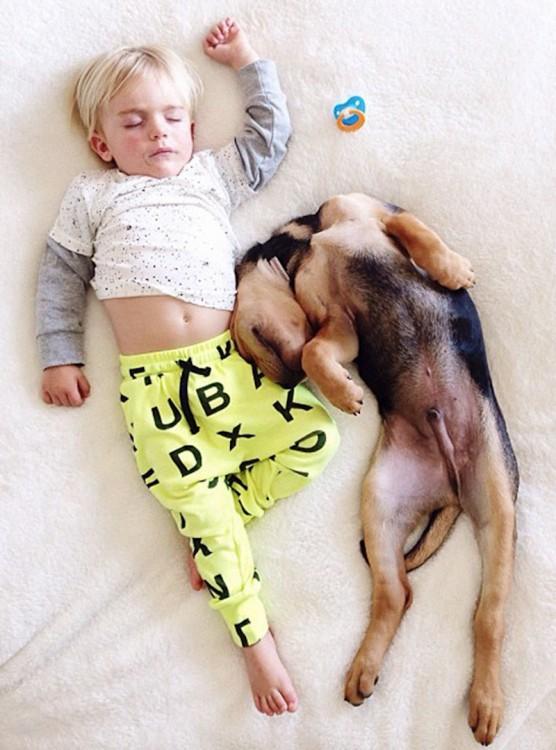 niño con pijama de color amarillo de letras dormido con perro