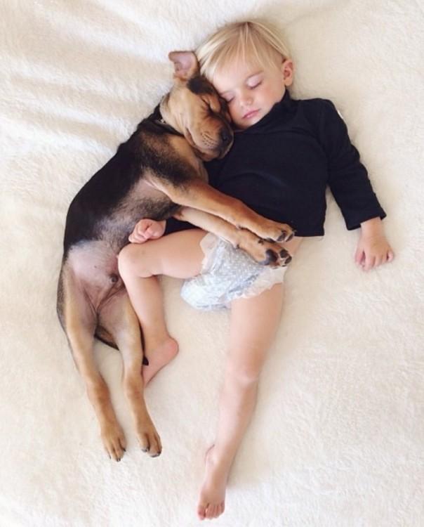 perro abrazando a niño mientras duermen