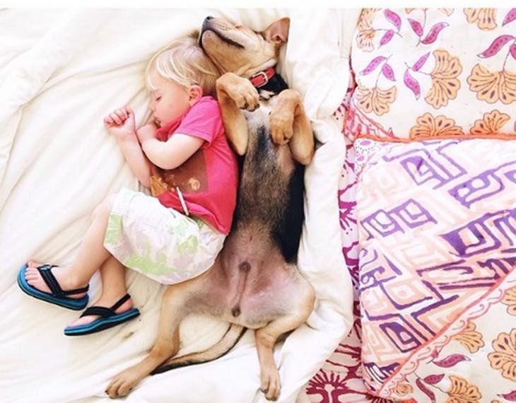 niño con playera rosa dormido junto a su perro