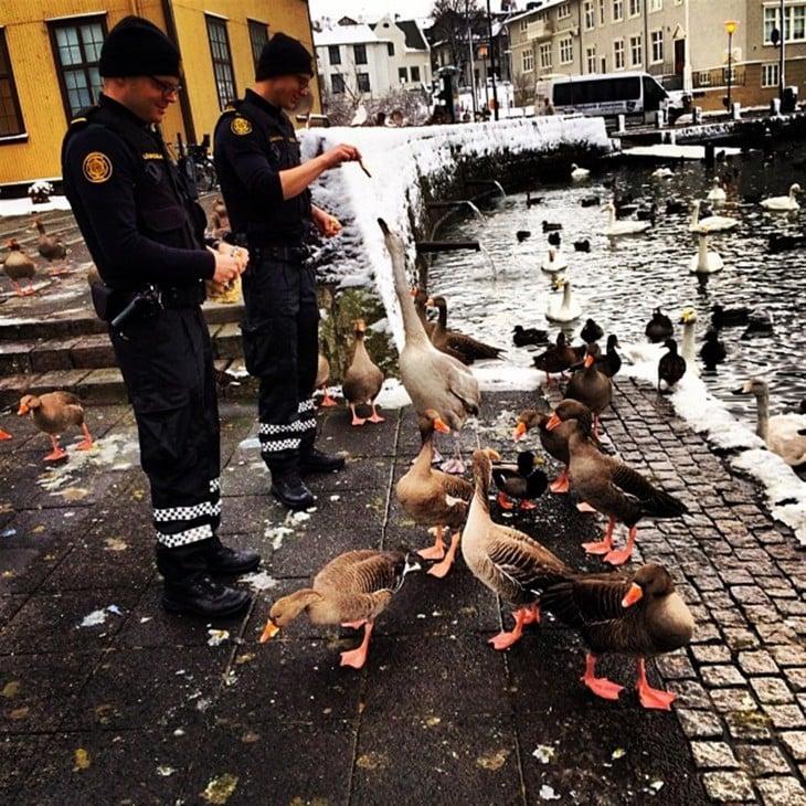 policía dándole de comer a los patos