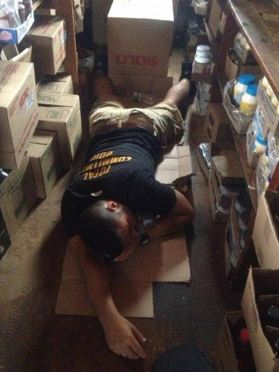 durmiendo en la cajas
