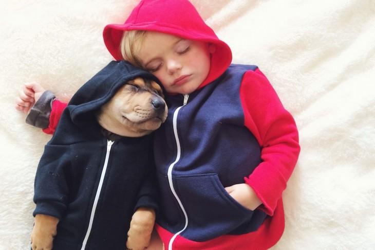 niño y perro con sudaderas dormidos