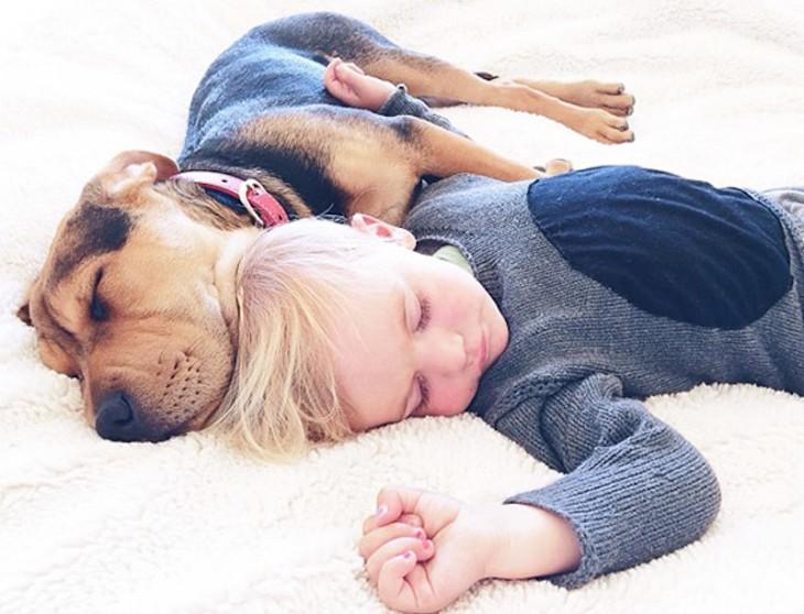 niño y perro vestido con sueter azul