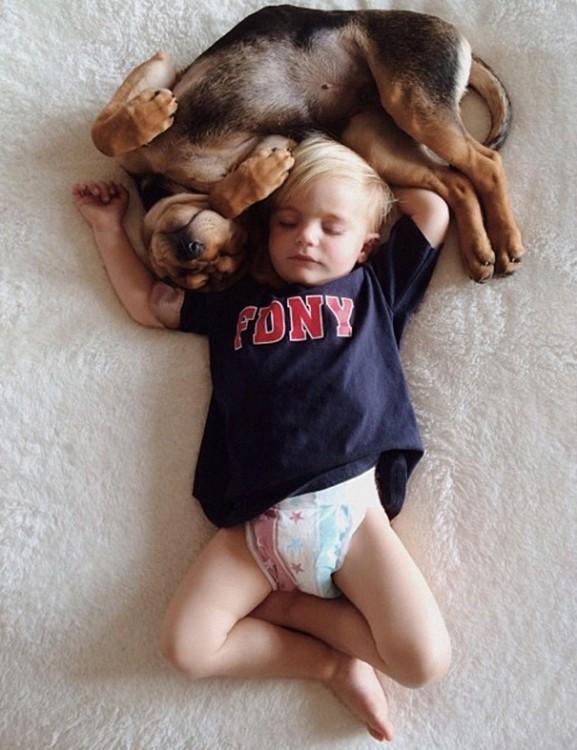 perro dormido en la cabeza de niño vestido con playera azul
