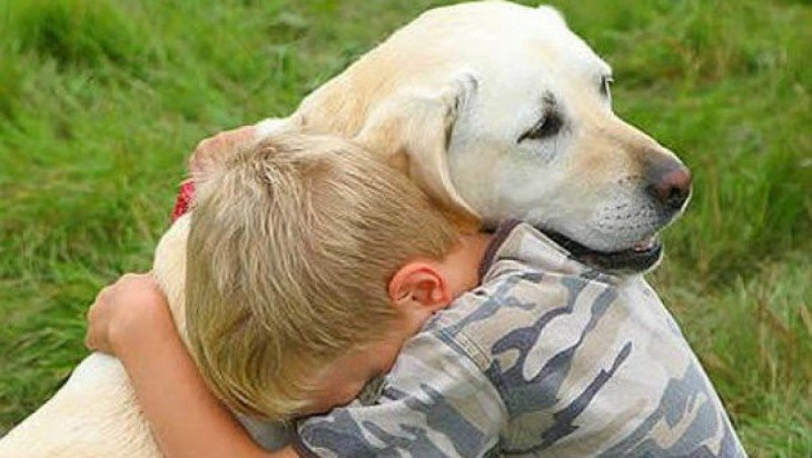 niño abrazando a su perro labrador blanco
