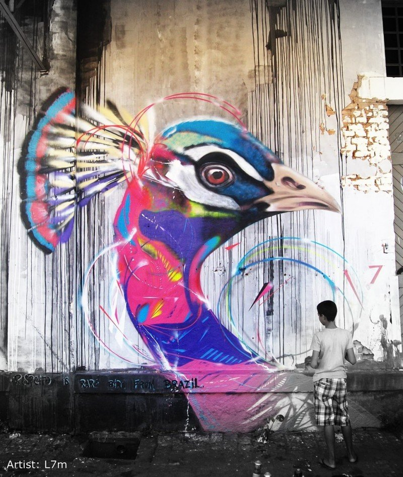 Murales Graffitis