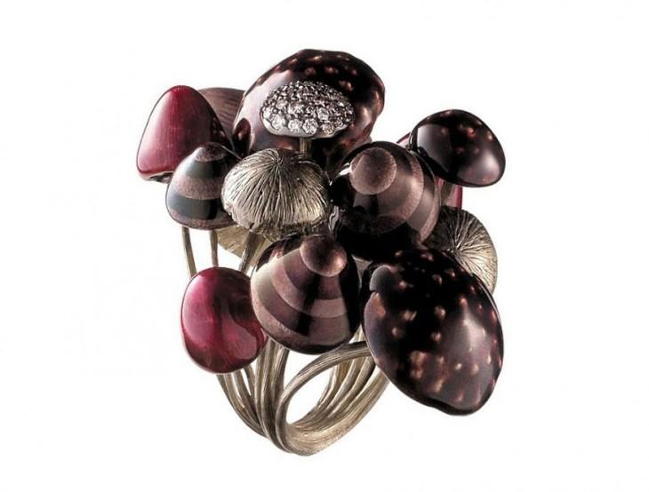 anillo con diferentes figurasdde de hongos