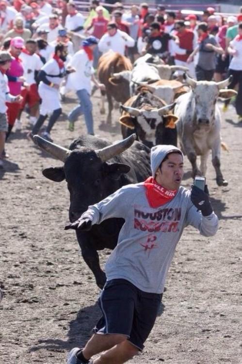 toro corre a un muchacho