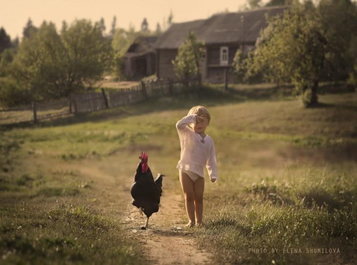 niño y gallo caminando