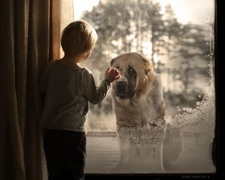 niño con perro en la ventana