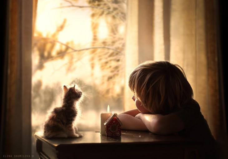 niño y gato en la ventana